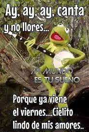 Pin De Rebeca Tamayo En Buenos Dias A Todos Y Buenas Noches Frases Preciosas Frases Celebres Buenos Dias