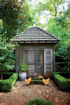 Green Chicken Coop