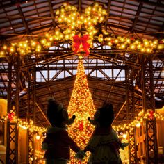 明日まで】気づけばあと3ヶ月!「ディズニークリスマス2016」の詳細 ... Walt Disney, Disney Love, Disney Parks, Tokyo Disney Resort, Tokyo Disneyland, Disney Christmas, Merry Christmas, Disney World Characters, Mickey And Friends