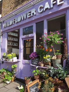 wildflower cafe - Google Search