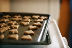 These are the best homemade dog treats, and fun ideas for making dog recipes at home. These dog treat recipes are healthy AND tasty - dogs love 'em! Salmon Dog Treats Recipe, Dog Treat Recipes, Healthy Dog Treats, Dog Food Recipes, Free Recipes, Easy Recipes, Cookie Recipes, Homemade Dog Cookies, Homemade Dog Food