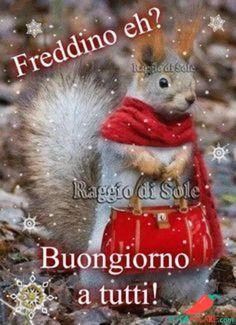 Immagini Belle Di Buongiorno - Pocopagare.com Good Morning Good Night, Day For Night, Good Day, Italian Memes, Humor, Squirrel, Stickers, Crochet, Disney