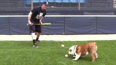 Butler Bulldog Big East Training Montage