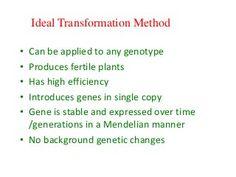 Plant breeding and biotechnology - Uganda - November 2012