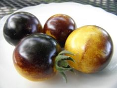 """""""Bosque Blue Bumblebee """" Tomatoes were bred by J & L Gardens. You can get seed from them. I'm looking forward to this one!"""