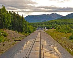 Train to Denali by Wilkinswerks  on 500px