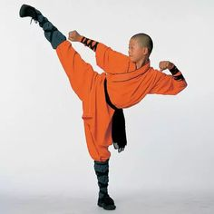 kung fu kick