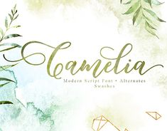 """Check out new work on my @Behance portfolio: """"Camelia Script Font"""" http://be.net/gallery/62071415/Camelia-Script-Font"""