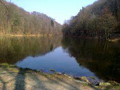lake in Železná studnička forest park (Bratislava)