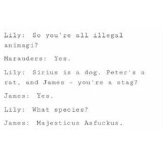 Stuff about the Marauders Harry Potter Puns, Harry Potter Images, Harry Potter Marauders, Marauders Era, Harry Potter Fan Art, Harry Potter Universal, James Potter, Nerd, Just In Case
