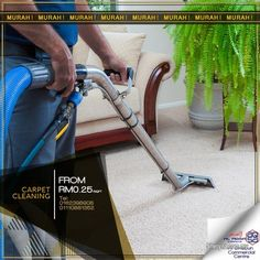 Cost Of Carpet Runners For Stairs Info: 1858752605 Grass Carpet, Grass Rug, Office Carpet, Cost Of Carpet, Hall Carpet, Free Classified Ads, Kitchen Carpet, Peterborough, Cleaning Solutions