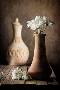 Still Life ~ brown, beige ✿⊱╮
