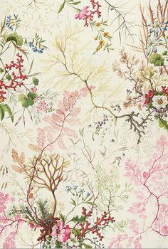 Silk textile design by William Kilburn ~ Seaweed
