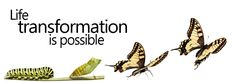Be Transformed By The Renewing Of Your Mind - Mind Transformation - You can transform