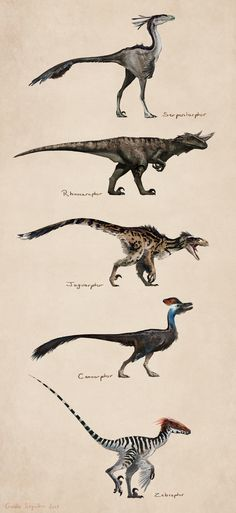 ArtStation - Savanna raptors, Gaelle Seguillon