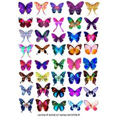 printable butterfly pattern Google Search everything butterflies