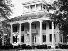 The Rosemount plantation house, built in the in the Forkland vicinity of Greene County, displays a pillared front and a rooftop observatory that resulted from the remodeling of an earlier residence.Courtesy of Alabama Historical Commission Old Southern Homes, Southern Plantation Homes, Southern Mansions, Plantation Houses, Southern Gothic, Southern Living, Greek Revival Architecture, Southern Architecture, Beautiful Architecture