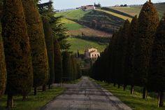 By Reportergimmi (Gianmaria Zanotti) on flickr. Madonna Dell'ulivo, Emilia Romagna, IT