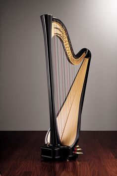The Daphne Series is my favorite harp from Salvi based purely on look.