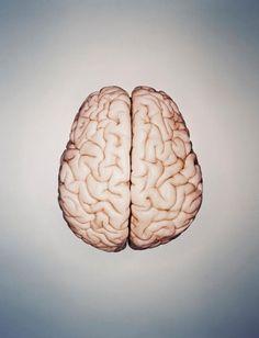 5 Brain Myths That Won't Go Away