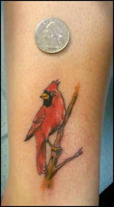 44 trendy ideas for red bird tattoo cardinals dads Small Cardinal Tattoo, Cardinal Tattoos, Red Bird Tattoos, Mom Tattoos, Trendy Tattoos, Small Tattoos, Tattoos For Guys, Blue Tattoo, Tatoos