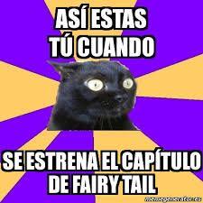Resultado de imagen para memes de fairy tail en español