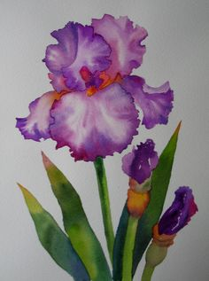 Nel's Everyday Painting: One Tall Iris - SOLD
