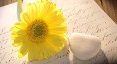 Dopis, ktorý  napísalo šťastie.