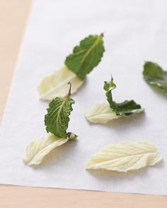 Chocolate Leaf Cake Decoration How-To - Martha Stewart Weddings [channel]