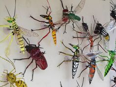 Incetos - Artesanato | Artesanato na feira de domingo no Lar… | Jean Camillo | Flickr Diversity, Insects, Craft, Domingo