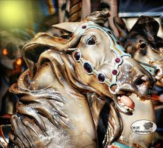 ~ Carousel Horse ~what a face