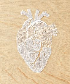 Hand-Cut Papercutting Artwork Anatomical Heart by lightpaper