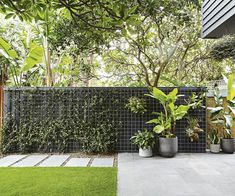 backyard paradise take a look at this Bali inspired garden is part of Balcony garden Kids - Inspired by a family trip to Bali, this compact garden includes kidfriendly zones and plenty of space for entertaining Bali Garden, Tropical Garden, Balinese Garden, Garden Beds, Tropical Paradise, Bamboo Hedge, Sydney Gardens, Synthetic Lawn, Casa Patio