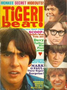 Tiger Beat Magazine - the US Weekly of 1960 teen pop culture - had great pinup posters in it! I hung them all over my walls.