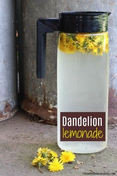 Juice Smoothie, Smoothie Drinks, Smoothies, Edible Plants, Edible Flowers, Dandelion Art, Dandelion Jelly, Dandelion Recipes, Flower Food