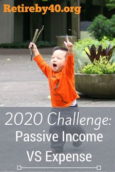 Our 2020 Challenge is to generate enough Passive Income to cover our Expenses. We didn't do so well in 2015, but I have high hope for 2016.