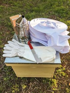 Are you interested in adding bees to your homestead? We are discussing beehives and what you need to get ready for bees on your property. New Beehive, Langstroth Hive, Drone Bee, Top Bar Hive, Picnic Blanket, Outdoor Blanket, Bee Hive Plans, Beekeeping For Beginners, Bee Swarm