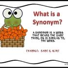 Synonym literacy station activity