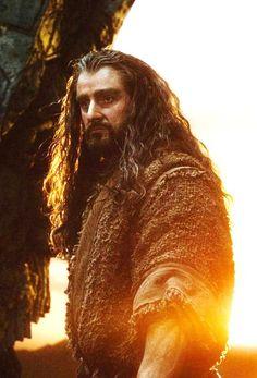 Richard Armitage as Thorin Oakenshield in The Hobbit Trilogy Hobbit Films, O Hobbit, Hobbit Art, Frodo Baggins, Thorin Oakenshield, Thranduil, Legolas, Arwen, Concerning Hobbits