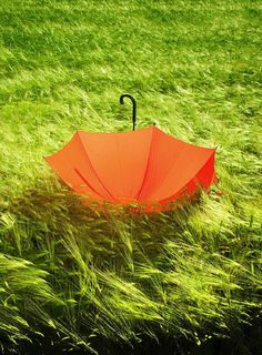 orange umbrella .:  Image Credit:  http://travelimg.org/ .:.  with compliments from:  http://snow.EnergyGoldRush.com