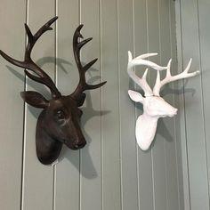 Framed Canvas print stag deer moose spray Street pop Art  painting Australia