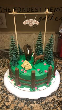 Horse Birthday Cakes, Western Birthday Cakes, Horse Theme Birthday Party, 9th Birthday Cake, Western Cakes, Bithday Cake, Horse Party, Cowgirl Birthday, Themed Birthday Cakes