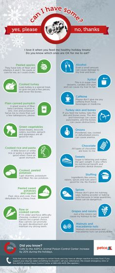 Chart of Safe and Unsafe Human Foods for your Dogs