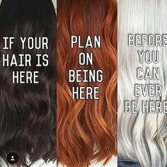 from - In case you didn't know. and depending on the quality of your hair you might not ever get there. That goes with all colours there's only so much we can achieve with a colour if the quality of your hair is poor. Hairstylist Memes, Hairdresser Quotes, Cosmetology Quotes, Hair Salon Quotes, Farmasi Cosmetics, Business Hairstyles, Hair Humor, Hair Meme, Hair Hacks