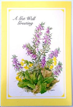 Gallant Greetings A Get Well Greeting Card  by krazkollector