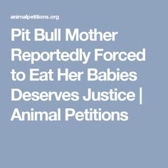 Pit Bull Mother Reportedly Forced to Eat Her Babies Deserves Justice | Animal Petitions