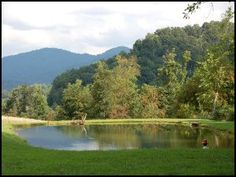 Rocky Creek Campground - Camping in Leicester, NC