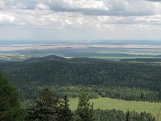 View from Green's Peak Show Low AZ  looking toward New Mexico 2010 photo taken by Sandi Huggett