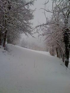 neve nella valle del Chiampo. Italy