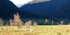 Bildergebnis für hagertal Klausenberg Berg, Vineyard, Mountains, Nature, Travel, Outdoor, Outdoors, Naturaleza, Viajes